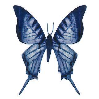 Dec/Transfers Blue Butterfly