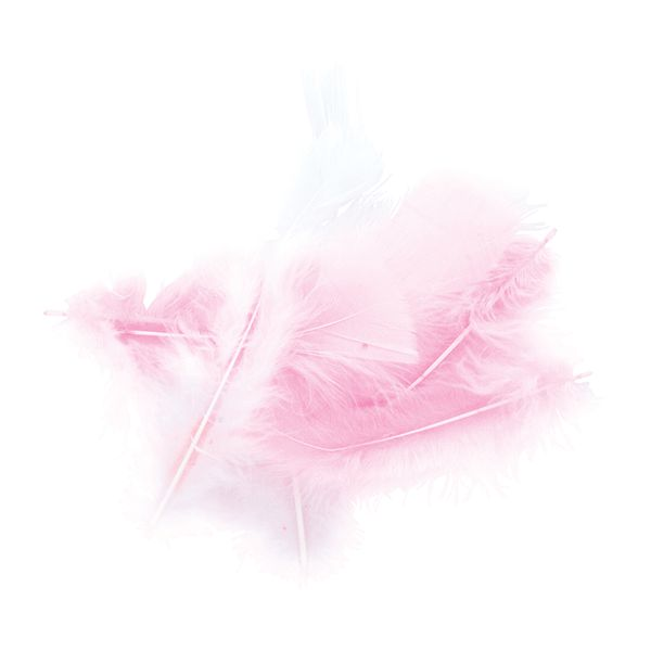 CRAFT FEATHERS PINK AND WHITE 10G