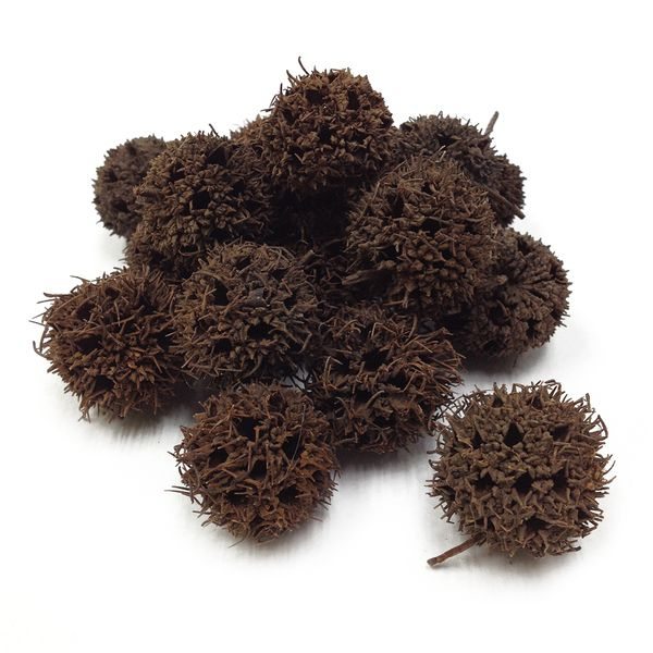 Spiky Pods Assorted 40g