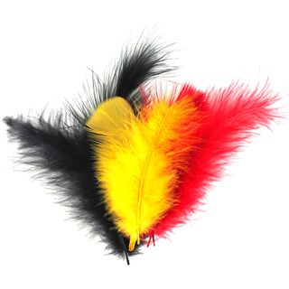 Craft Feathers Black Red Yellow 10G