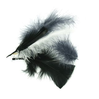 Craft Feathers Black-White-Grey 10G