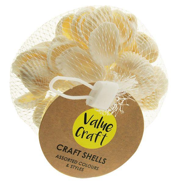 Shells Clam Plain White 100G