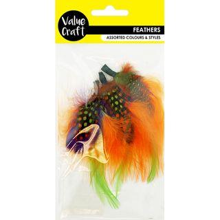 Feather Accessories Orange/Green/Purple