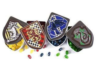 Harry Potter Crest Tin