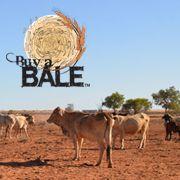 Weldclass Donates $500 to Buy-A-Bale