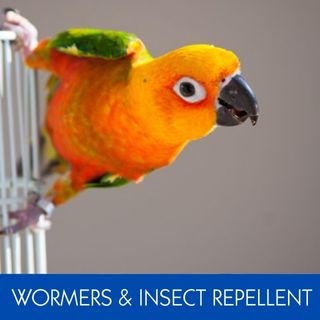WORMERS & INSECT REPELLENTS