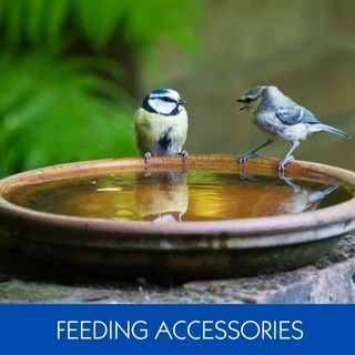 FEEDING ACCESSORIES