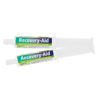 RANVET RECOVERY AID DRENCH PASTE 80ML