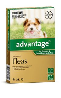 ADVANTAGE SMALL DOG 0-4KG 4PACK