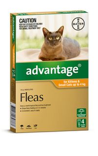 ADVANTAGE SMALL CAT 0-4KG 4PACK