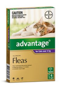 ADVANTAGE LARGE CAT OVER 4KG 4PACK