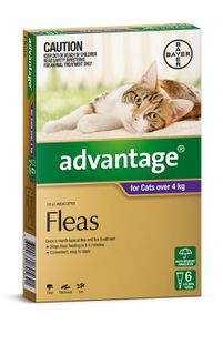ADVANTAGE LARGE CAT OVER 4KG 6PACK