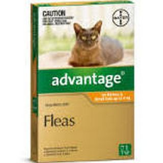 ADVANTAGE SMALL CAT 0-4KG 1PK