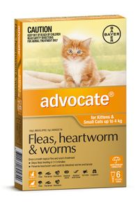 ADVOCATE CAT SMALL ORANGE 0-4KG 6PACK
