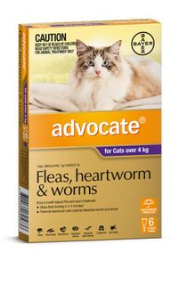 ADVOCATE CAT LARGE PURPLE OVER 4KG 6PACK