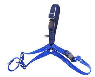 GENTLE LEADER EASY WALK HARNESS MEDIUM LARGE BLUE