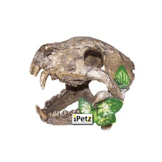 ULTIMATE REPTILE SUPPLIERS ORNAMENT SKULL BIG CANINES LARGE