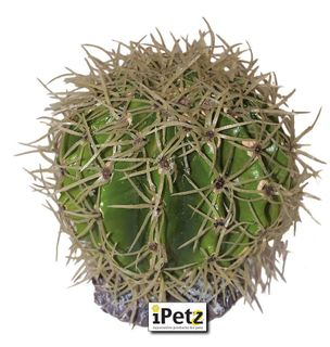 ULTIMATE REPTILE SUPPLIERS SPIKEY BALL CACTUS LARGE