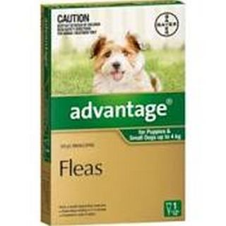 ADVANTAGE SMALL DOG 0-4KG 1PACK