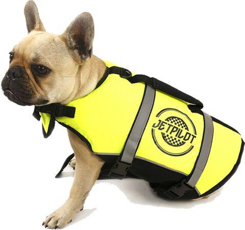 JET PILOT 2020 JP Dog PFD Buoyancy Vest