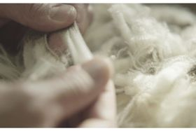 The Skin Health Benefits of Merino Wool