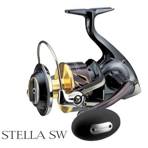 Shimano Stella SWB 10000 PG