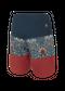 Picture Code Boardshorts - Horta