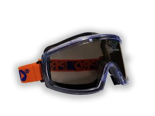 Tinted Goggles