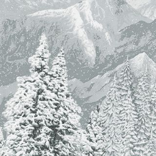 FIRST SNOW METALLIC PANEL