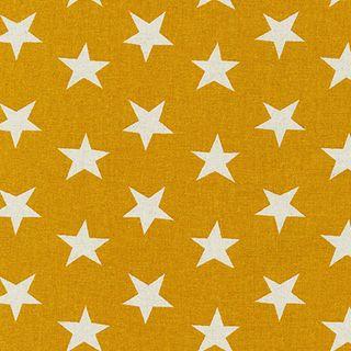 SEVENBERRY:CANVAS NATURAL STARS