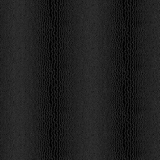 CENTURY BLACK ON BLACK- JANUARY 2021