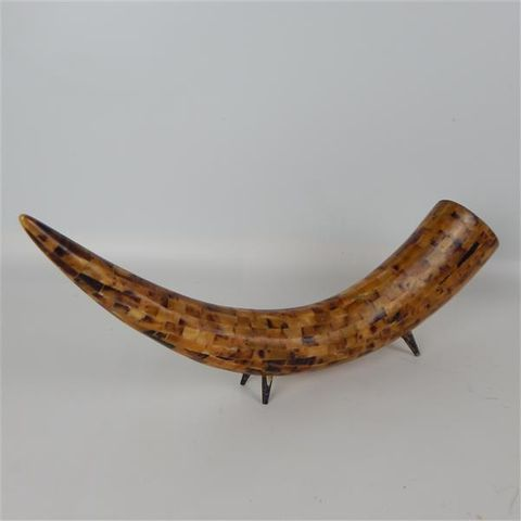 Kalu Horn 53cm x 18cm high