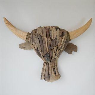 Driftwood Cow Head 60cm wide x 45cm high