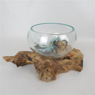 Driftwood Bowl Glass Vase Med Approx 18cm x 16cm high