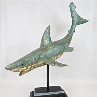 Arca Wooden Shark 65cm x 60cm high