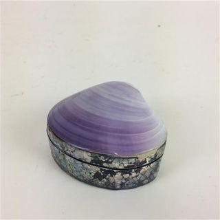 Shell Box Purple 6cm