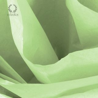 WILLOW SATIN WRAP TISSUE PAPER 480 SHEETS